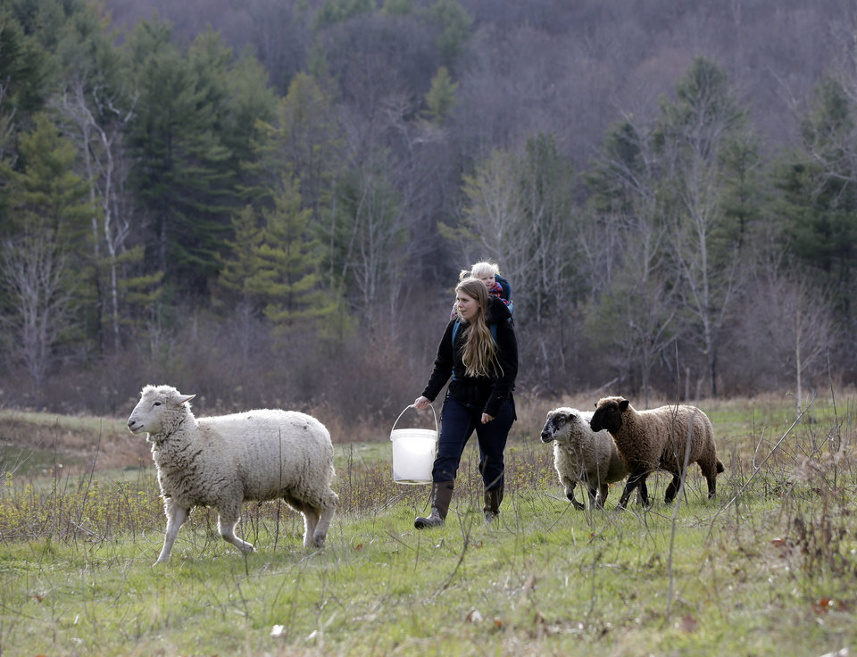 In this Thursday, Nov. 15, 2012 photo, Schuyler Gail and her daughter Tillie walk with sheep at the family's Climbing Tree Farm in New Lebanon, N.Y. When Schuyler and husband Colby Gail were trying to get started in farming, they ran into an obstacle common to many fledgling farmers: Land was costly and hard to find. They turned to a local land conservancy, which matched them up with a landowner willing to sell for an affordable price. (AP Photo/Mike Groll)