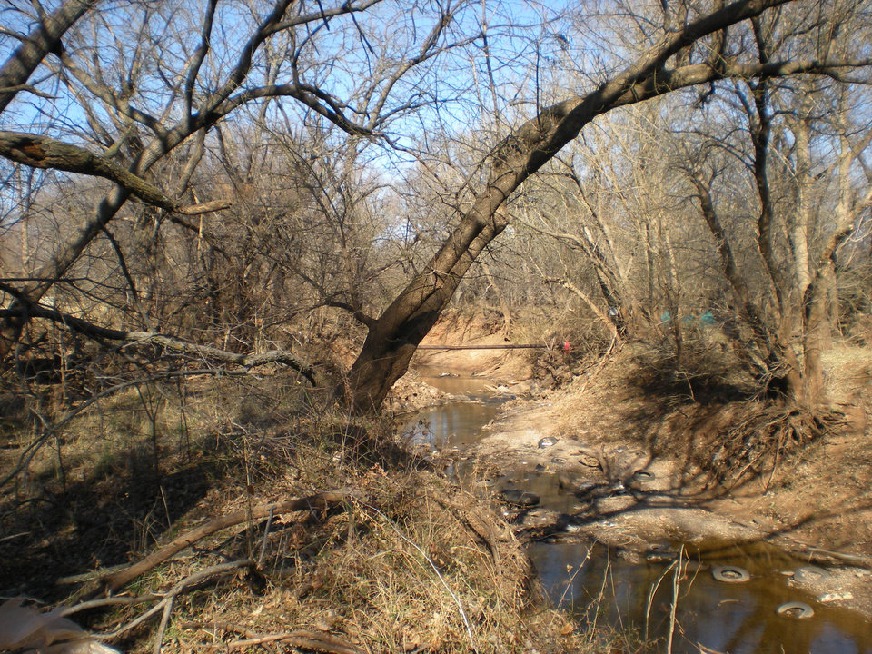 Photo - Crutcho Creek as it is today, with the deep crumbling banks as described by Washington Irving in 1832. - Photo by Mary Phillips