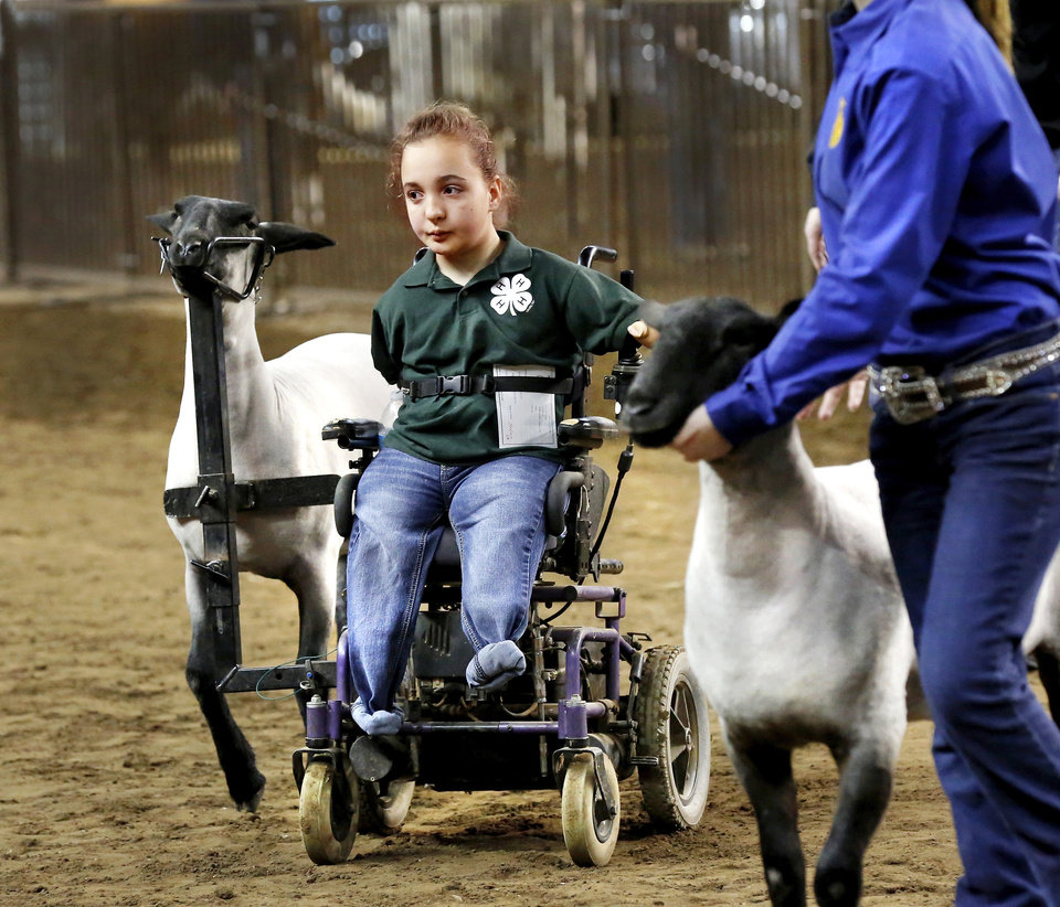 Photo -  Above: A bracket made to fit Shelby Frost's wheelchair attaches to her show sheep with the help of a harness. She won eighth place in showmanship a this year's Youth Expo. PHOTO BY JIM BECKEL, THE OKLAHOMAN     Jim Beckel -