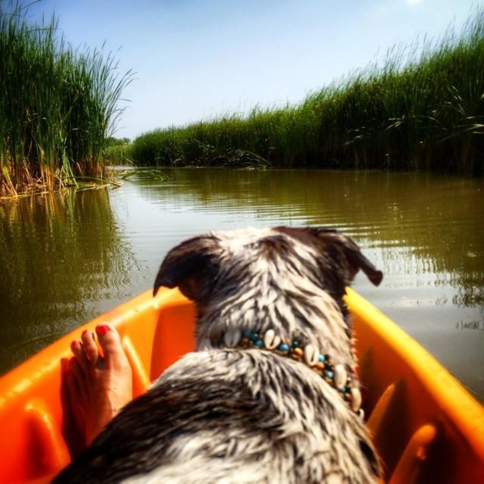 Lake Overholser - Photo by Instagrammer @run_love_dog