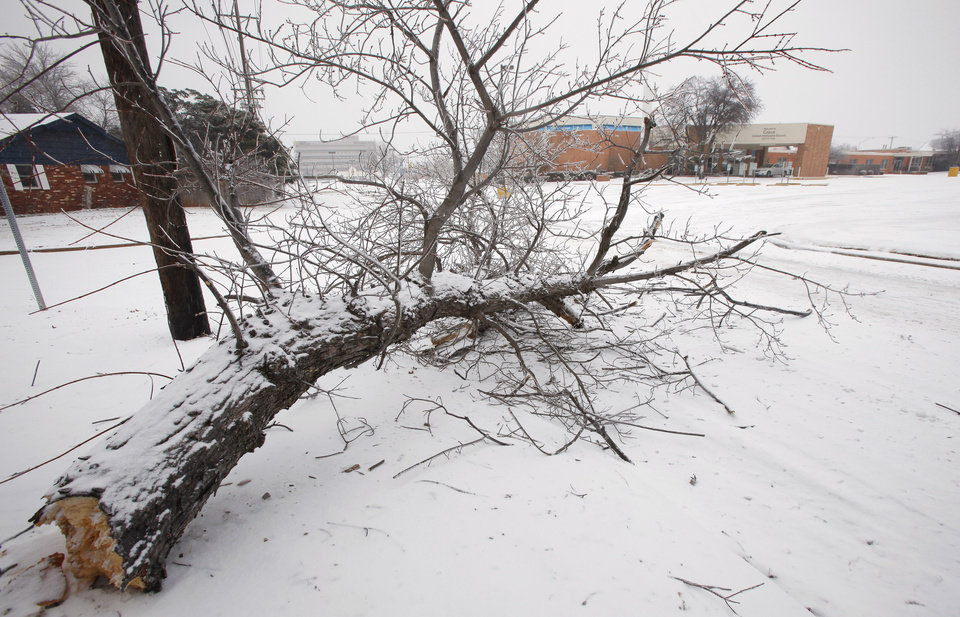 Photo - Tree limb blocks the southbound lane of N. Tulsa at the Holiday Place intersection in Oklahoma City Friday, Jan. 29, 2010. Photo by Paul B. Southerland, The Oklahoman ORG XMIT: KOD
