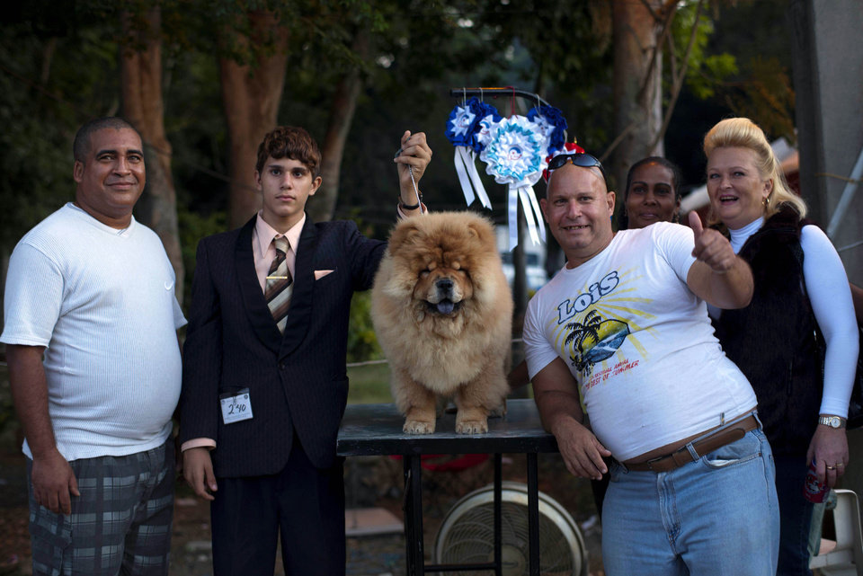 In this Nov. 25, 2012 photo, the Aguiar family shows off their chow chow dog named Paco who won a prize in the puppy category at the Fall Canine Expo in Havana, Cuba. Hundreds of people from all over Cuba and several other countries came for the four-day competition to show off their shih tzus, beagles, schnauzers and cocker spaniels that are the annual Fall Canine Expo�s star attractions. (AP Photo/Ramon Espinosa)