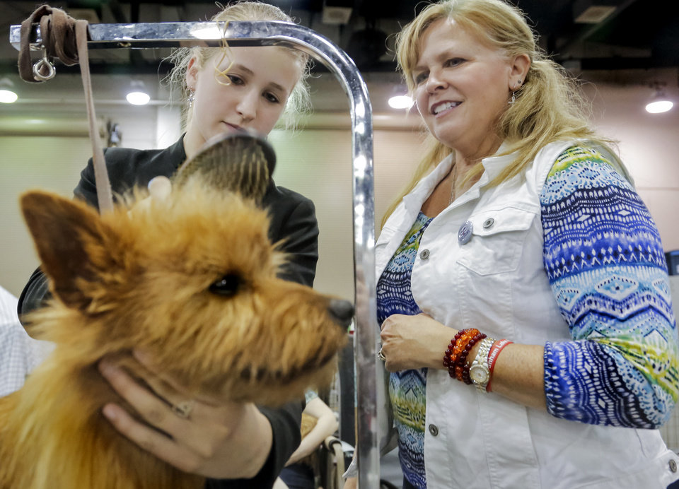 Photo -  Show dog owner Theresa Goiffon, right, works with her daughter, Ellie, both from Wisconsin, as they groom their champion Australian terrier, Jake. Photo by Chris Landsberger, The Oklahoman   CHRIS LANDSBERGER -