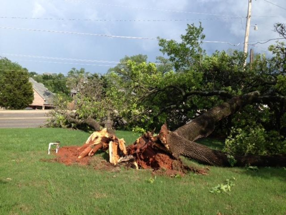 Photo - A downed tree near Locust and Bryant in Edmond. Photo via Diana Baldwin