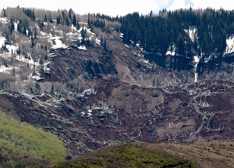 Photo - Hundreds of trees are knocked down where a massive mudslide happened near Collbran, Colo., Monday, May 26, 2014. Rescue teams are searching for three men missing after a half-mile stretch of a ridge saturated with rain collapsed. (AP Photo/Grand Junction Daily Sentinel, Dean Humphrey)
