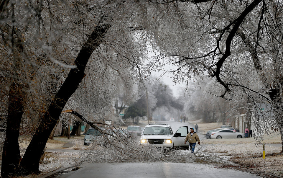 Photo - A motorist exits his truck to move a tree limb blocking Blackwelder Avenue just south of NW 11th Street in Oklahoma City after a winter storm moved through the area, Saturday, December 21, 2013. Photo by Bryan Terry, The Oklahoman