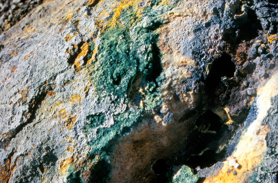 Algae Galdieria sulphuraria is found along with sulfur on a rock in Iceland. Oklahoma State University researcher Gerald Schoenknecht is part of a team that genetically mapped the algae's genome, unexpectedly finding the algae has enzymes like those of bacteria. <strong>Christine Oesterhelt - photo provided</strong>
