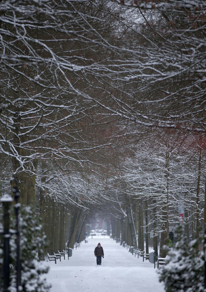 A man walks down a path covered by snow in a public park in Wilrijk, Belgium on Tuesday, Jan. 15, 2013. Belgium experienced the first snow of the season on Tuesday which snarled traffic in early morning rush hour. (AP Photo/Virginia Mayo)