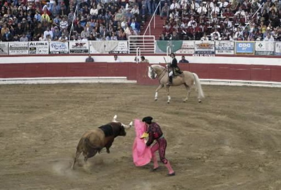 Photo - In this photo taken Monday, June 15, 2009, a bull is seen charging during a