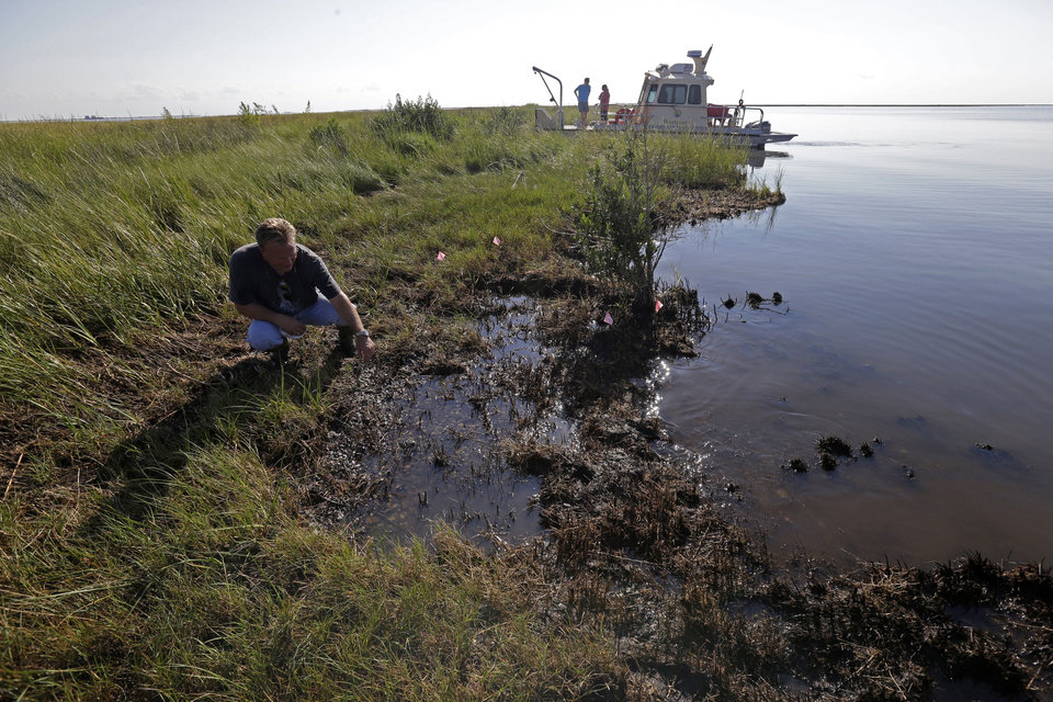 PJ Hahn, Coastal Zone Manager for Plaquemines Parish, examines oil along the shoreline of Bay Jimmy, which was heavily impacted by the Deepwater Horizon oil spill, in Plaquemines Parish, La., Friday, Sept. 27, 2013. The methods that BP employed during its 86-day struggle to stop oil gushing into the Gulf of Mexico will be the focus of a trial resuming Monday, Sept. 30, 2013 in New Orleans, in the high-stakes litigation spawned by the worst offshore spill in the United States. (AP Photo/Gerald Herbert) ORG XMIT: LAGH308