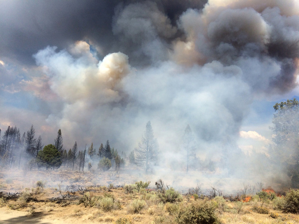 Photo - In this Sunday July 13, 2014, photo released by the Oregon Dept. of Forestry, the Moccasin Hill fire burns north of Sprague River and northeast of Klamath Falls, Ore.  Lightning struck Oregon more than 6,000 times Sunday and Monday, touching off small fires by the dozens. Such a barrage can be expected to cause numerous