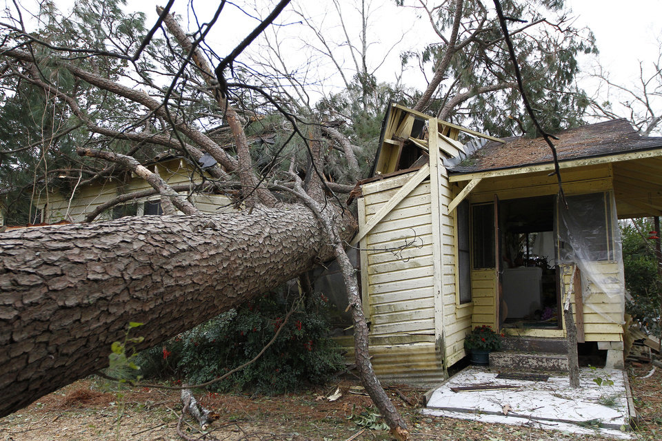 Photo - A tree blown over by a storm sits in the home of Martha Cavin in Centreville, Miss. on Wednesday, Dec. 26, 2012. According to Centreville Police Chief Jimmy Ray Reese, Cavin had to be cut out from her home. She was taken by ambulance to the hospital to treat a gash to her head. More than 25 people were injured and at least 70 homes were damaged in Mississippi by the severe storms that pushed across the South on Christmas Day, authorities said Wednesday. (AP Photo/The Enterprise-Journal, Philip Hall)