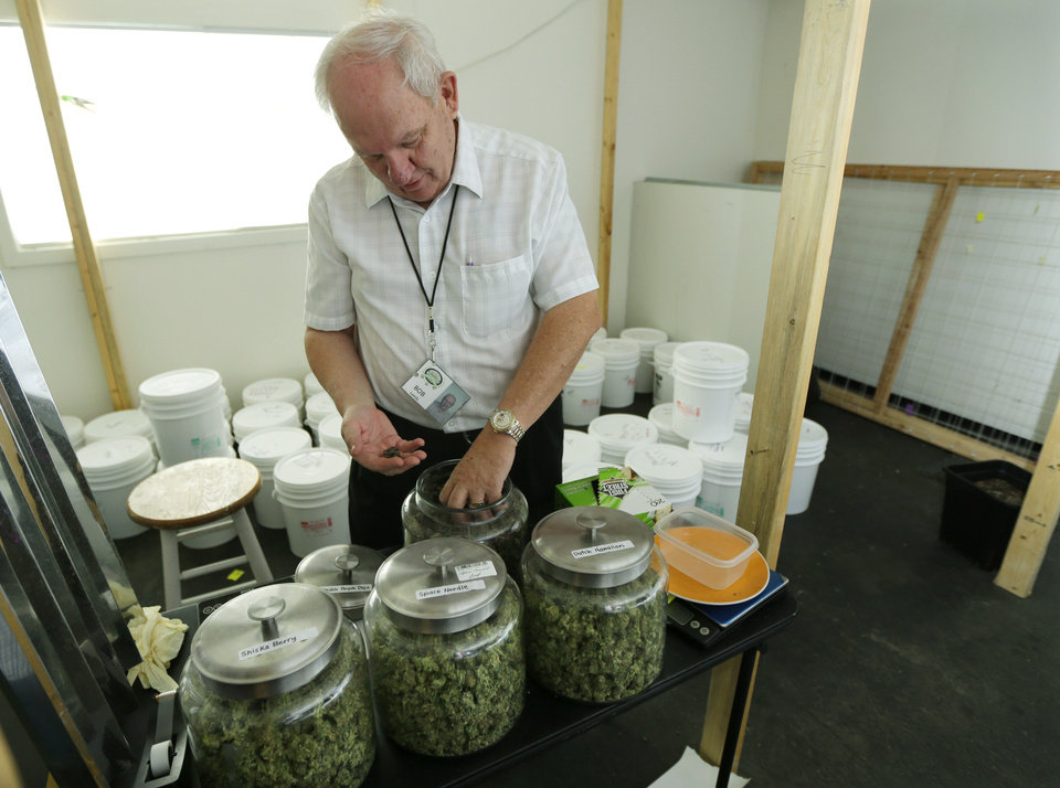 Photo - In this June 25, 2014, photo, Bob Leeds, owner of Sea of Green Farms, a recreational pot grower and processor in Seattle, examines different strains of pot in a room where pot is dried prior to weighing, trimming, and packaging. Plants normally hanging in the room had all been processed and packed away for packaging and distribution. (AP Photo/Ted S. Warren)