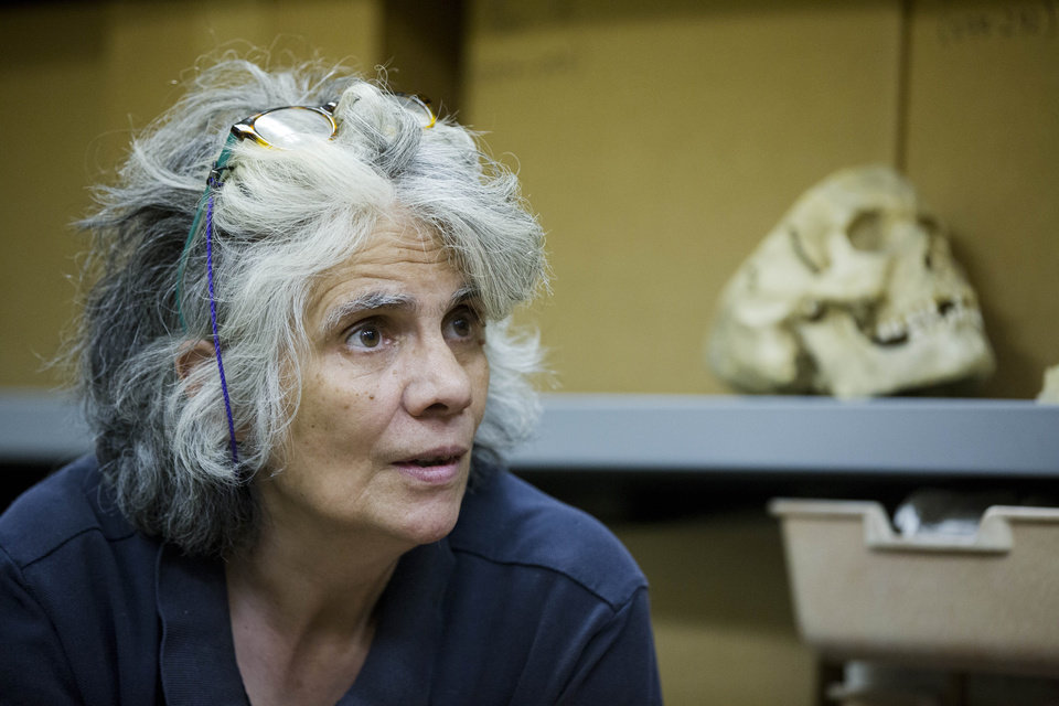 Photo - Janet Monge, the curator-in-charge of the anthropology section at the The Penn Museum, part of the University of Pennsylvania, discusses recently rediscovered 6,500-year-old human  remains during an interview with The Associated Press Tuesday, Aug. 5, 2014, in Philadelphia. The museum announced Tuesday that it had rediscovered in its own storage rooms a 6,500-year-old human skeleton believed to have been a man at least 50 who stood 5 feet, 9 inches tall. The remains were originally excavated from southern Iraq around 1930. (AP Photo/Matt Rourke)