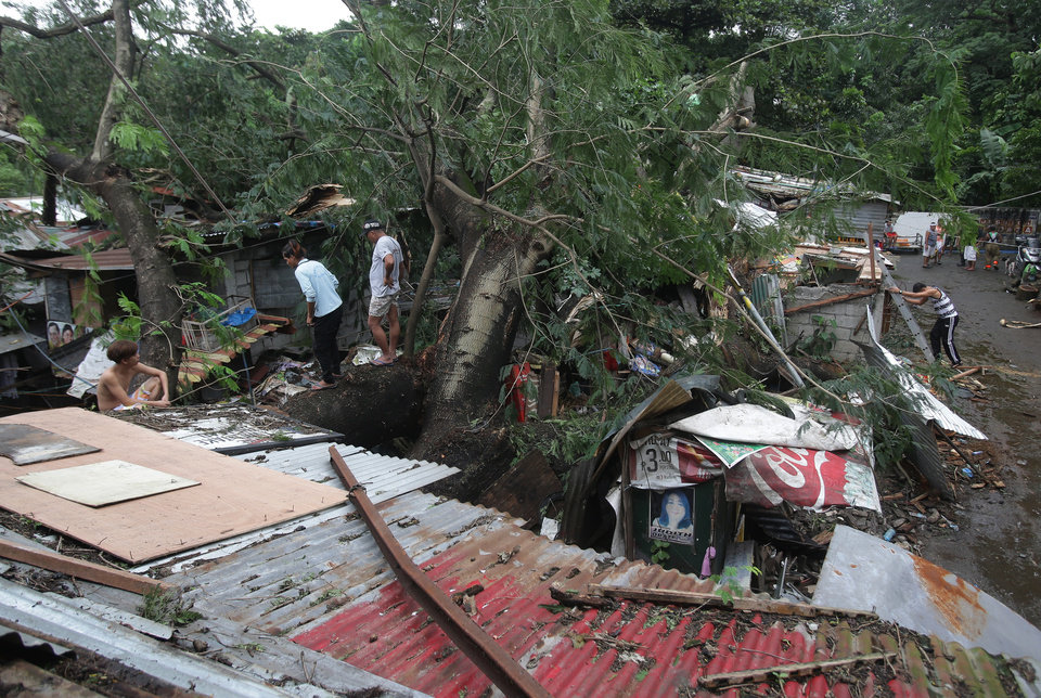 Photo - Residents and rescuers look at the damage caused by a toppled tree in suburban Quezon city, north of Manila, Philippines on Monday, Oct. 19, 2015. Army, police and civilian volunteers scrambled Monday to rescue hundreds of villagers trapped in their flooded homes and on rooftops in a northern Philippine province battered by slow-moving Typhoon Koppu. (AP Photo/Aaron Favila)