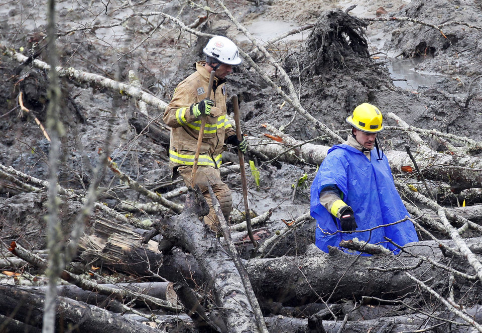 Photo - Firefighters navigate through downed trees as they carry shovels in the muck at the west side of the mudslide on Highway 530 near mile marker 37 on Sunday, March 30, 2014, in Arlington, Wash. Periods of rain and wind have hampered efforts the past two days, with some rain showers continuing today. (AP Photo/Rick Wilking, Pool)