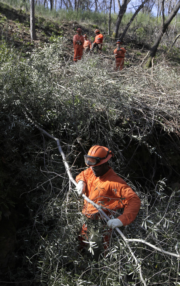 Photo - In this photo taken Wednesday  Feb. 13, 2013, an inmate work crew from the Washington Ridge Conservation Camp clears brush as a fire prevention measure, near Auburn, Calif.  A fire-prevention fee, unpopular with many rural property owners, is back before the state Legislature, as Gov. Jerry Brown proposes to expand its use and opponents try to kill it.(AP Photo/Rich Pedroncelli)