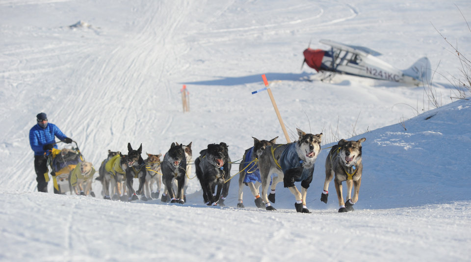 Photo - Hans Gatt drives his team off the Yukon River into the village of Kaltag during the 2014 Iditarod Trail Sled Dog Race on Saturday, March 8, 2014. (AP Photo/The Anchorage Daily News, Bob Hallinen)