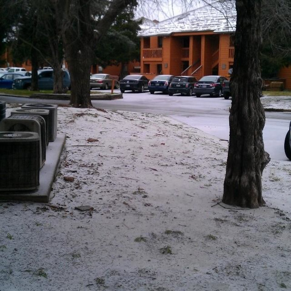 Photo - Snow in Norman. Photo by Megan McClellan
