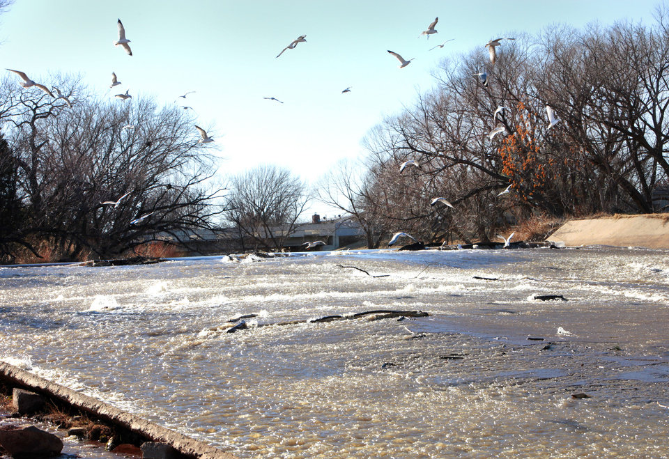 Gulls gather over the water flowing into Hefner from Canton Lake, Monday, February 4, 2013.   Photo By David McDaniel/The Oklahoman