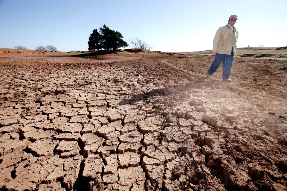 Drought conditions. Logan County rancher John Pfeiffer walks on a cattle path across the bottom of one of his dry ponds, Wednesday, November 28, 2012.  Photo By David McDaniel/The Oklahoman