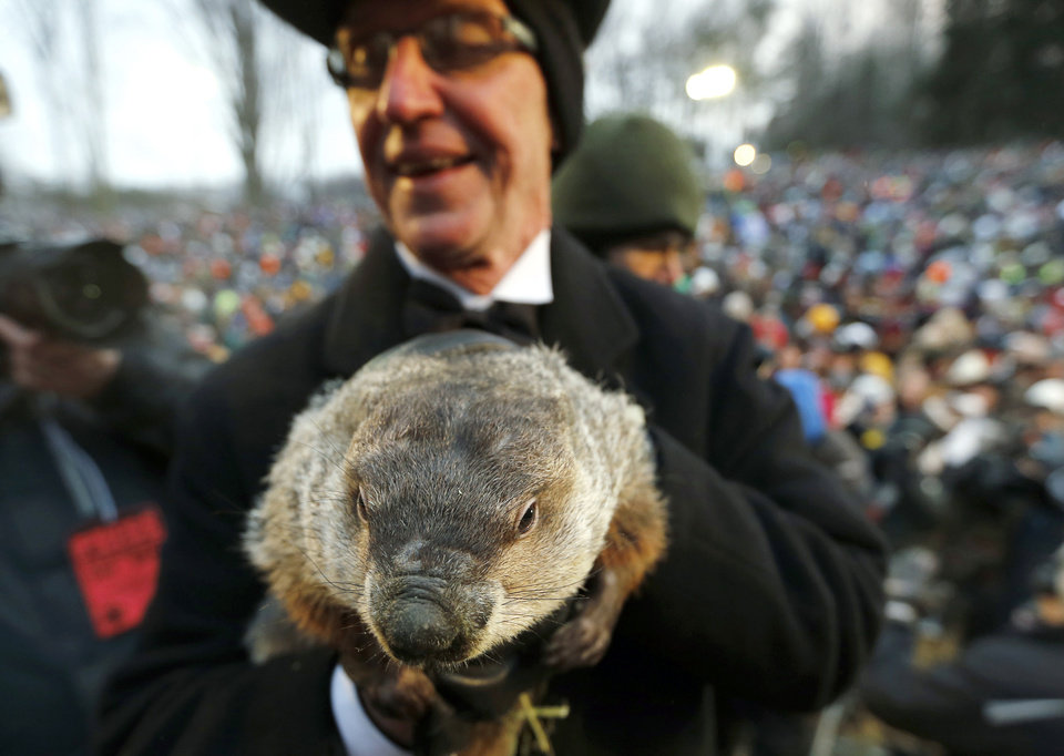Photo - FILE - In a Saturday, Feb. 2, 2013 file photo, Groundhog Club co-handler Ron Ploucha holds the weather predicting groundhog, Punxsutawney Phil, after the club said Phil did not see his shadow and there will be an early spring, on Groundhog Day, in Punxsutawney, Pa.  Groundhog Day coincides with the Super Bowl for the first time on Sunday, Feb. 2, , but Punxsutawney Phil's people say they don't expect the big game to steal his early morning spotlight. the Punxsutawney Groundhog Club expects about 20,000 revelers to gather around Gobbler's Knob when western Pennsylvania's world-famous rodent emerges from his lair just after dawn Sunday. (AP Photo/Keith Srakocic, File)