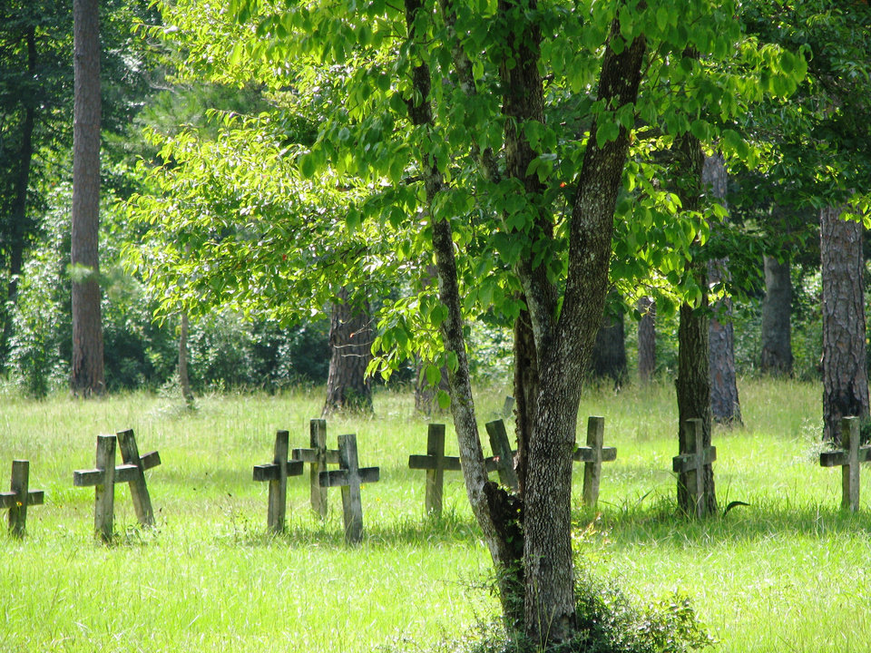 Photo -  These are some of the graves in Blakeley State Park. Almost 3,000 Confederate soldiers and over 600 Union soldiers died here in the last major battle of the Civil War. Photo by Peter Wright, for The Oklahoman