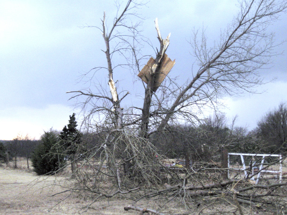 Photo - Debris landed in this tree in Kanaly's North Country addition west of Mitch Park. PHOTO BY JOHN A. WILLIAMS, THE OKLAHOMAN