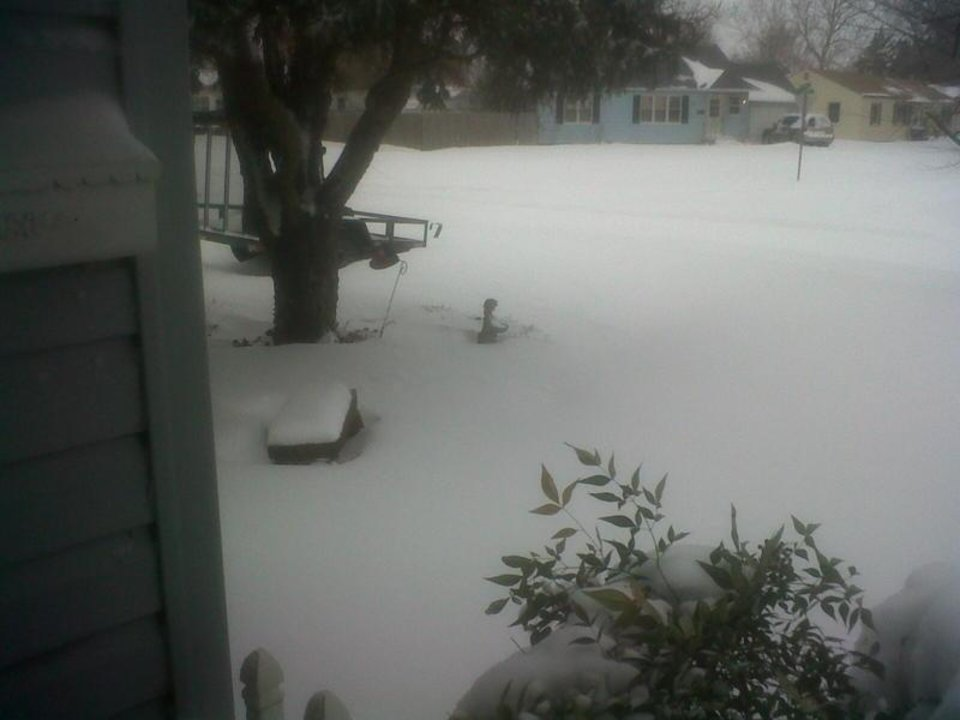 Photo - ENID -- This is looking out of my garage in Enid, OK. the rock bench under the tree is at least a foot tall.