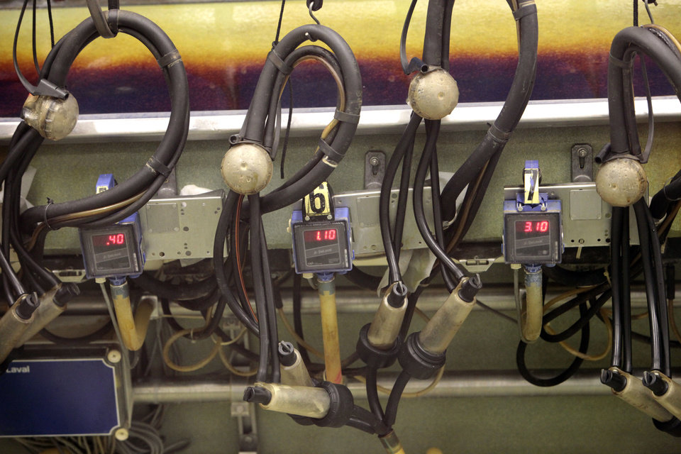 Photo - Redlands Community College offiicials plan to sell the milking machine and other equipment at the college's goat dairy to cut costs. The goats also will be sold. Photo by David McDaniel, The Oklahoman  David McDaniel - The Oklahoman