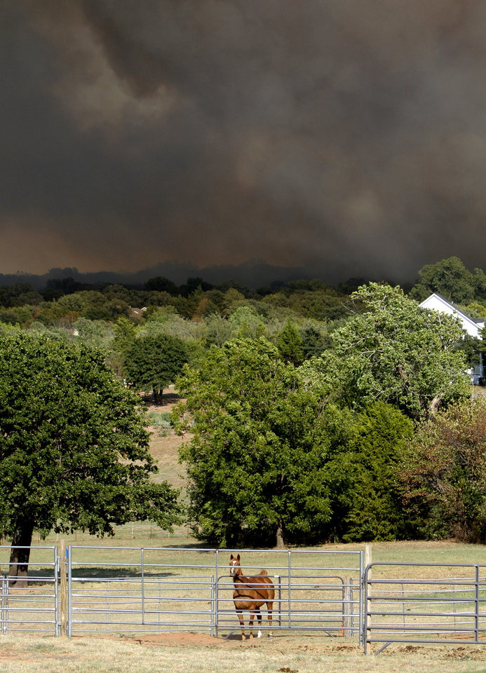 Photo - A horse looks over a fence as a wildfire approaches near NW 122nd and Midwest Blvd. in Oklahoma City, Wednesday, August 31, 2011. Photo by Bryan Terry, The Oklahoman