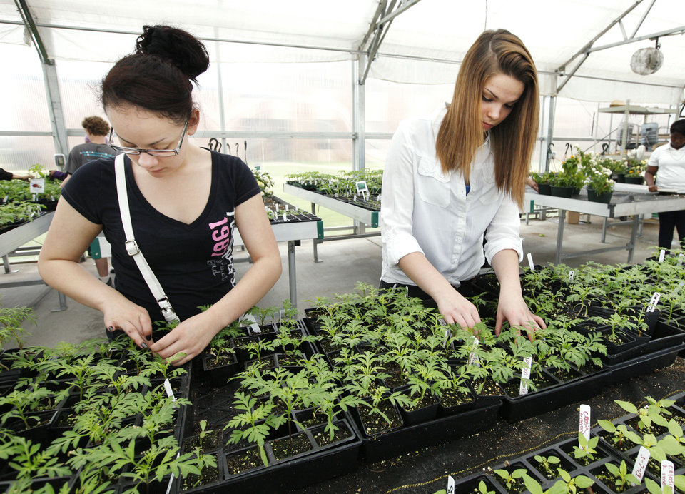 Jessica Gallegos, age 14, and Carolinia Morey, age 16, both freshmen, work Monday with bedding plants during a plant sale at Oklahoma Centennial High School in Oklahoma City. Photo by Paul B. Southerland, The Oklahoman <strong>PAUL B. SOUTHERLAND</strong>