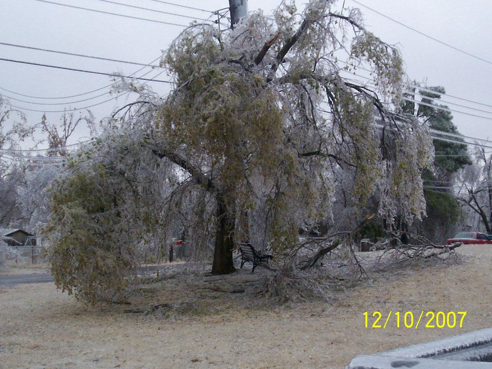 Broken tree in front yard Community Photo By: Elizabeth Submitted By: Elizabeth, Oklahoma City