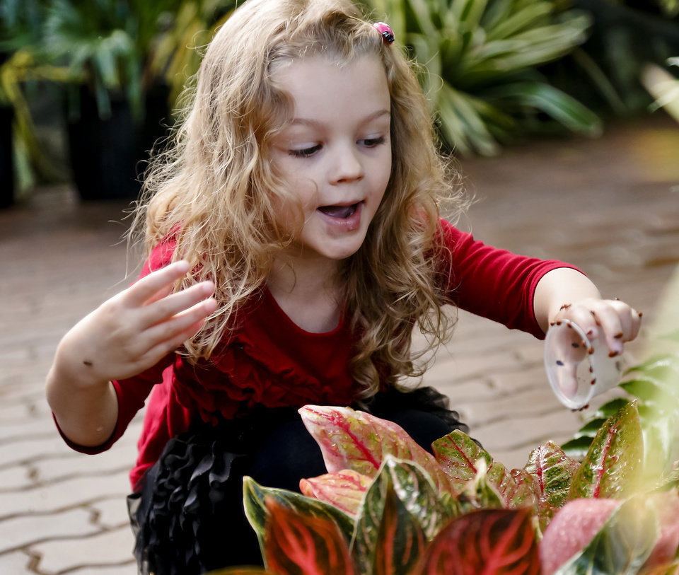 Charlotte Peters reacts as she places ladybugs on a plant during the ladybug release at the Myriad Botanical Gardens/Crystal Bridge on Tuesday, May 7, 2013, in Oklahoma City, Okla. Photo by Chris Landsberger, The Oklahoman ORG XMIT: KOD