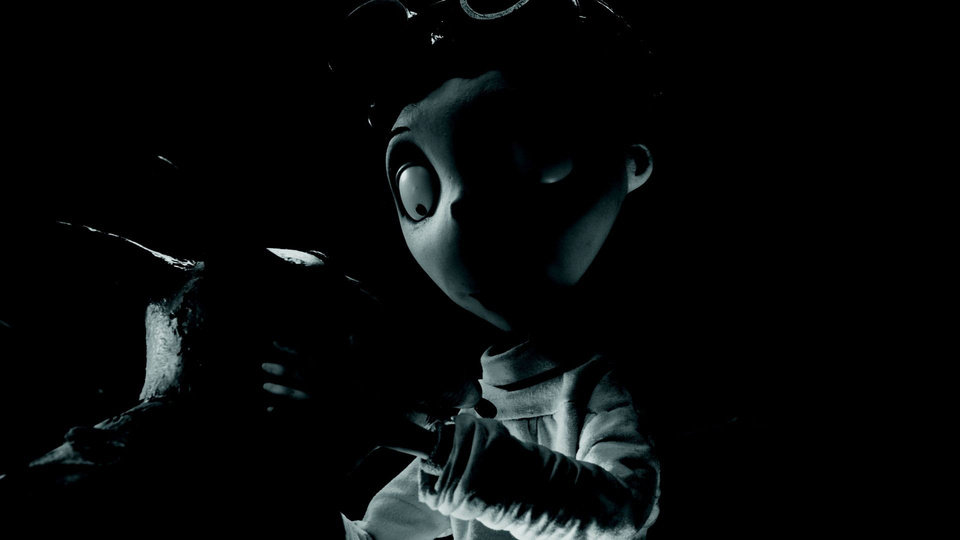 "Victor (voice of Charlie Tahan) happily examines his beloved dog Sparky after he successfully brings him back to life in ""Frankenweenie,"" a new stop-motion, animated comedy from director Tim Burton.  Walt Disney Pictures photo. <strong></strong>"
