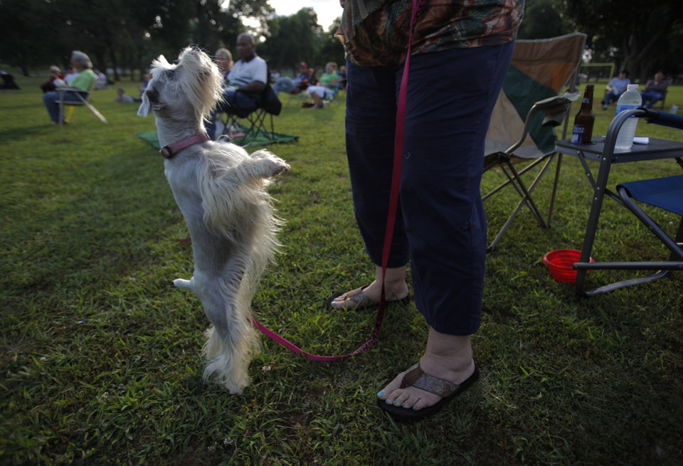 Photo - Zo-E dances with her owner, Pam Haynie, during the Midwest Twilight Concert in Midwest City on Thursday.  Garett Fisbeck - THE OKLAHOMAN