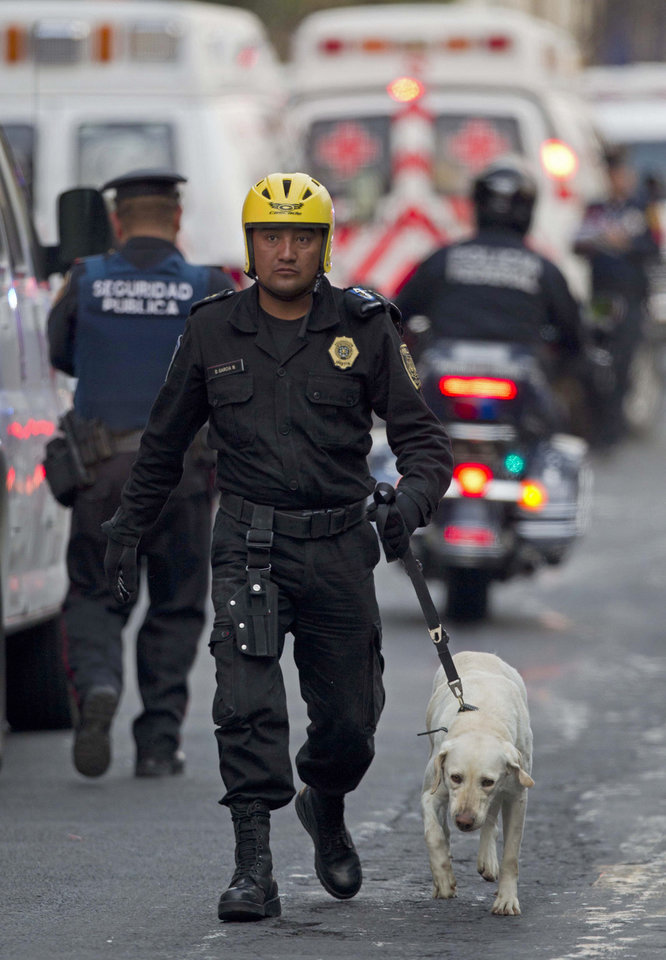 An emergency responder walks with a search dog as emergency workers and firefighters search for trapped survivors at the site on an explosion in a building at Mexico's state-owned oil company PEMEX complex, in Mexico City, Thursday Jan. 31, 2013. The explosion killed more than 10 people and injured some 80 as it heavily damaged three floors of the building. According to civil protection and local media some people remained trapped in the debris from the explosion, which occurred in the basement of an administrative building next to the iconic, 52-story tower of Petroleos Mexicanos, or PEMEX.(AP Photo/Eduardo Verdugo)