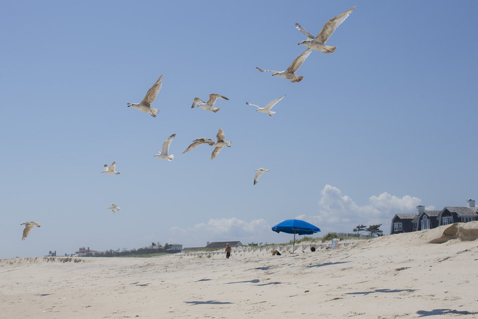 Photo - In this photo taken on Friday, July 11, 2014, gulls lift off near a beachfront home in Southampton, N.Y. Studies show the gap separating the rich from the working poor has been ever-widening in recent years and few places provide that evidence as starkly as Long Island's Hamptons. (AP Photo/John Minchillo)