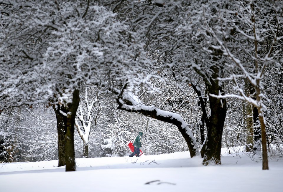 Photo - Denise Hendricks walks up a snow covered hill while sledding at Hafer Park following a winter storm in Edmond, Okla., Wednesday, Feb. 5, 2020.  [Sarah Phipps/The Oklahoman]