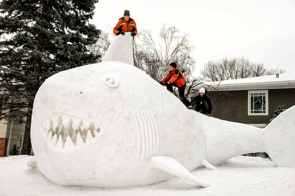 Photo - Three brothers, from left, Trevor, Connor, and Austin Bartz built this 16 foot high snow shark in the front yard of their New Brighton, Minn. home, Wednesday, Jan. 1, 2014.  It took them around 95 hours of work and they gathered the snow from houses in their neighborhood. (AP Photo/Star Tribune, Glen Stubbe) ST. PAUL PIONEER PRESS OUT, MINNEAPOLIS-AREA TV OUT, MAGS OUT