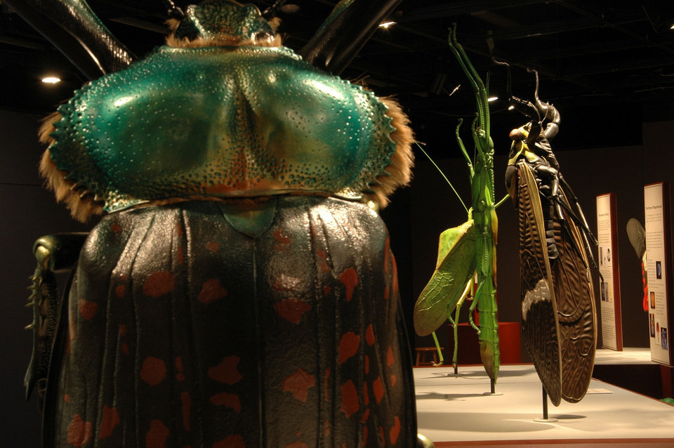 "The camouflage of bugs is highlighted in this display of statues created by artist Lorenzo Possenti for the ""Bugs ... Outside the Box"""