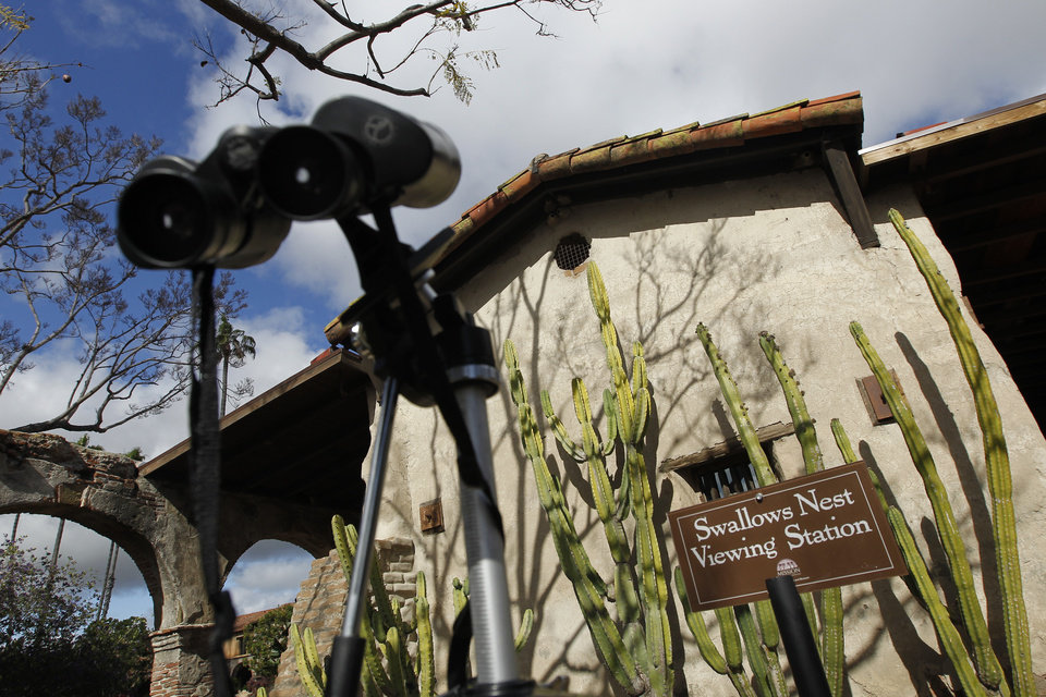 Photo -   A swallow veiwing area is set up to watch nesting birds at the mission in San Juan Capistrano, Calif., Thursday, April 26, 2012. For most of its 230-year history, the Mission at San Juan Capistrano has been known for the cliff swallows that flock to the crumbling bell tower each spring to nest. In recent decades, however, what used to be swarms of swallows at the original Spanish mission have dwindled. (AP Photo/Chris Carlson)