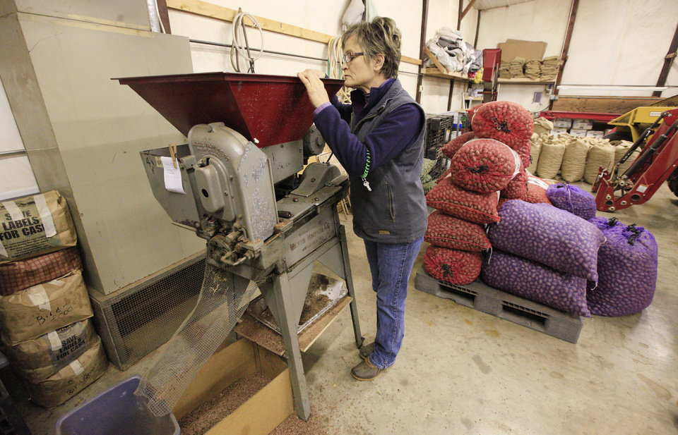 Diane Couch, manager at Couch Orchard, with a customer's pecan order being cracked at Couch Orchard in Luther Monday, Dec. 23, 2013.  Photo by Paul B. Southerland, The Oklahoman