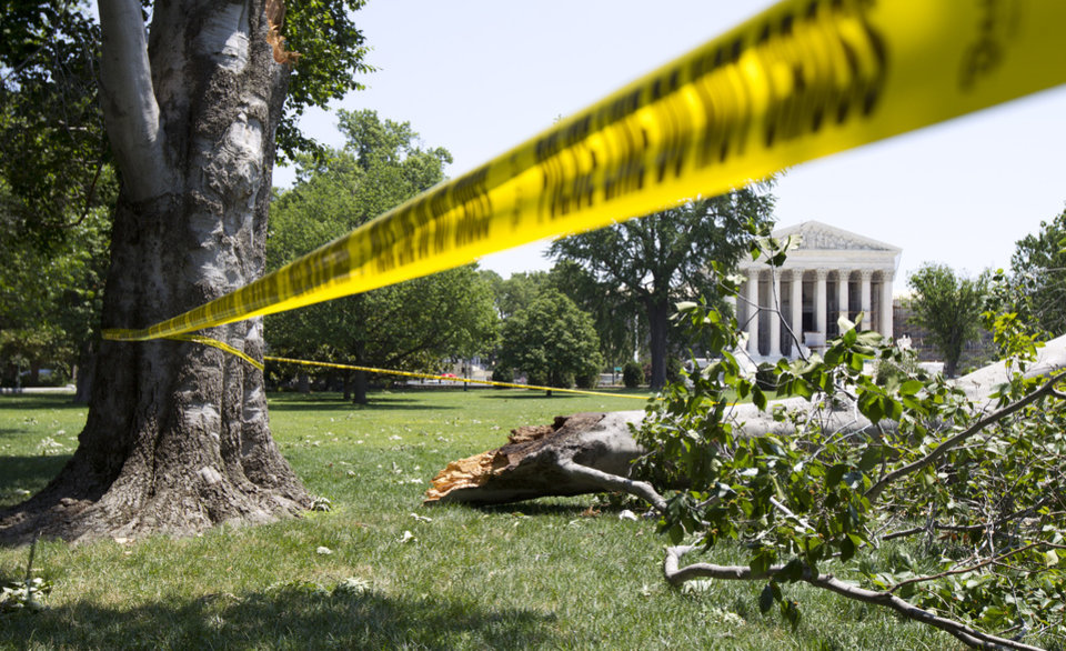 Photo -   An American Beech tree is down on Capitol Hill grounds in Washington Saturday, June 30, 2012 across the U.S. Supreme Court after a powerful storm swept across the Washington region late Friday. Violent storms swept across the eastern U.S., killing at least nine people and knocking out power to hundreds of thousands on a day that temperatures across the region are expected to reach triple-digits. (AP Photo/Manuel Balce Ceneta)