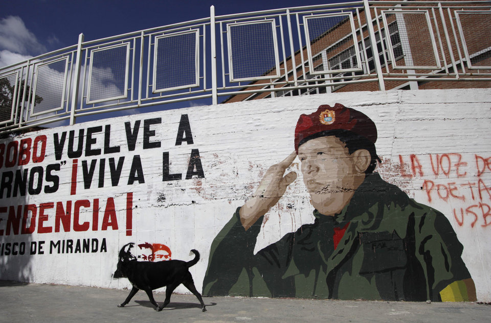 "A dog walks past a mural of Venezuela President Hugo Chavez in Caracas, Venezuela, Monday, Dec. 31, 2012.  Chavez is confronting ""new complications"" due to a respiratory infection nearly three weeks after undergoing cancer surgery, his Vice President Nicolas Maduro said Sunday evening in Cuba as he visited the ailing leader for the first time since his operation. (AP Photo/Ariana Cubillos)"