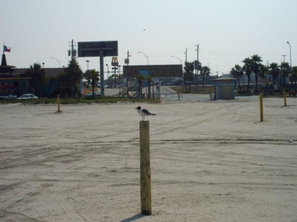 a pole in the middle of nowhere..Made just for the cute little bird of course<br/><b>Community Photo By:</b> joe<br/><b>Submitted By:</b> Tama, Midwest