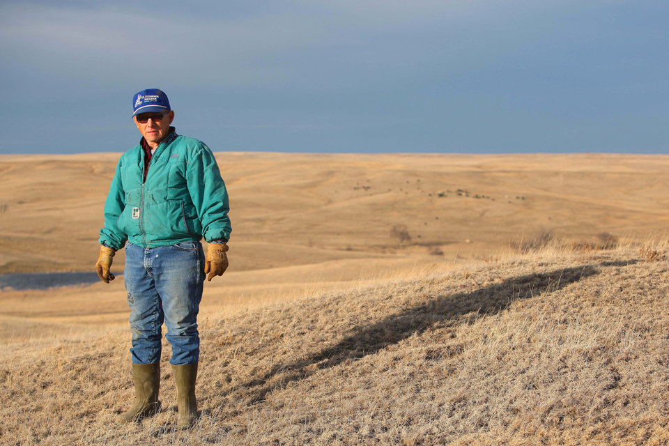 Photo - In this March 17, 2014 rancher Chuck O'Connor stands in a pasture near Philip, in western South Dakota. O'Connor lost 45 of his 600 cows and 50 of his 600 calves in the intense two-day storm last fall which first brought rain and then dumped up to 4 feet of snow. He brought in about 200 replacement females to rebuild his herd. (AP Photo/Toby Brusseau)