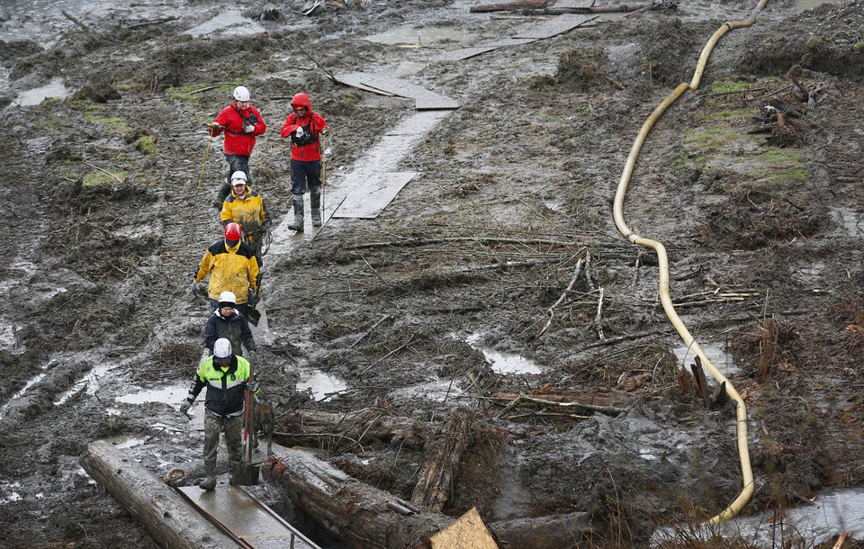 Photo - Search and rescue teams walk through a field of mud on a path of plywood at the west side of the mudslide on Highway 530 near mile marker 37  in Arlington, Wash., on Sunday, March 30, 2014. Periods of rain and wind have hampered efforts the past two days, with some rain showers continuing today. Last night, the confirmed fatalities list was updated to 18, with the number of those missing falling from 90 to 30. (AP Photo/Rick Wilking, Pool)