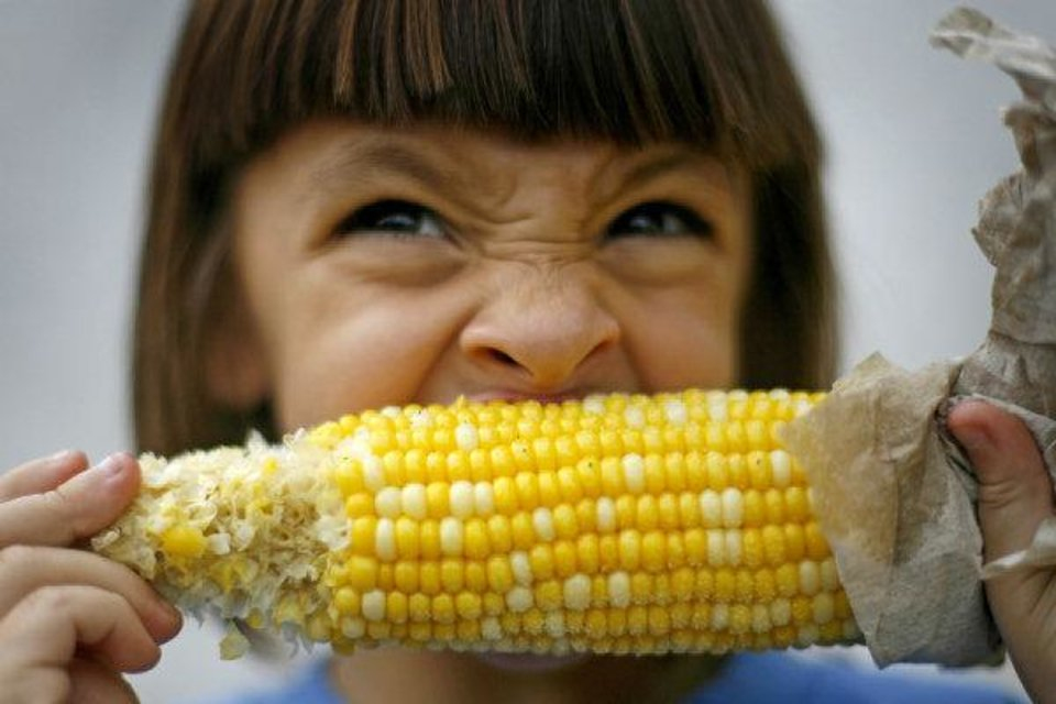 Photo - Gerra Tomberlin, of Sayre, takes a bite out of an ear of corn during the Oklahoma State Fair in Oklahoma City.  BRYAN TERRY - THE OKLAHOMAN