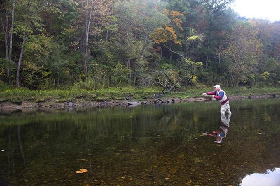 Photo -  A fly fisherman tries his luck in the Beaver Lake tailwaters on the White River during Saturday's One Fly Tournament.